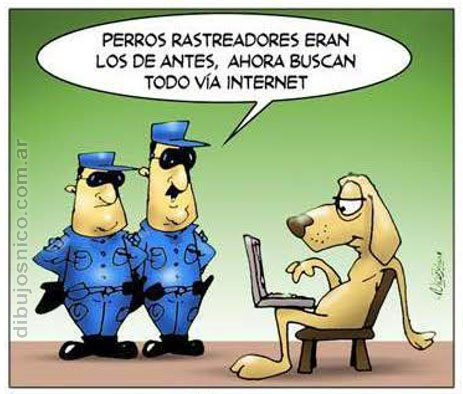 Chiste Animales Internet Humor Gráfico